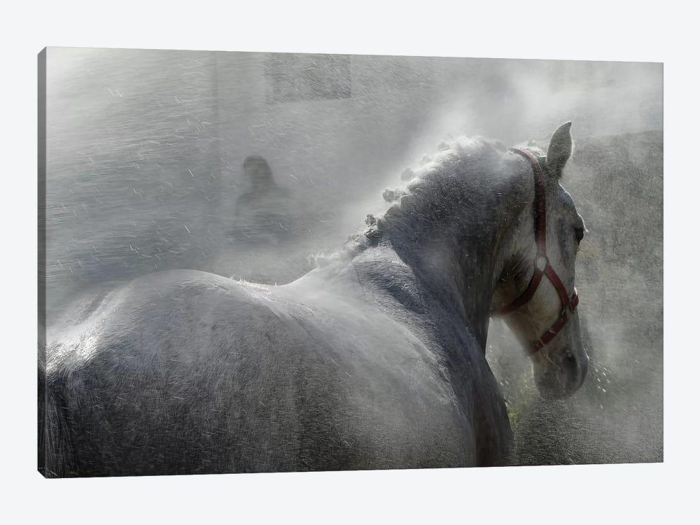 Gramy by Milan Malovrh 1-piece Art Print