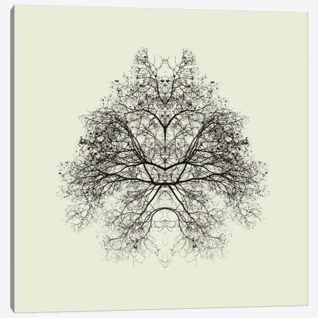 Rorschach Test Canvas Print #OXM1867} by Nadav Jonas Art Print