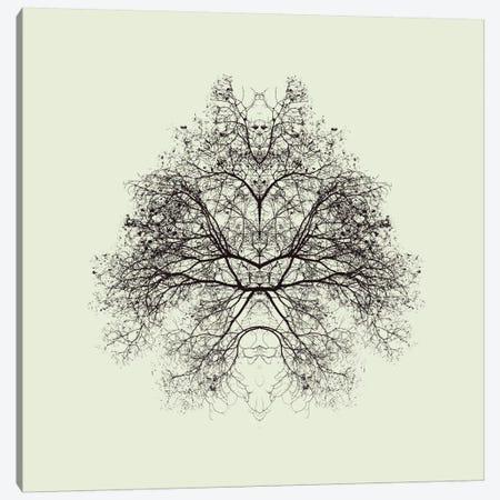 Rorschach Test Canvas Print #OXM1867} by Nadav Jonas Art Print