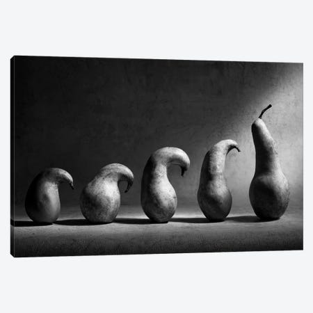 The Evolution Canvas Print #OXM186} by Victoria Ivanova Canvas Artwork