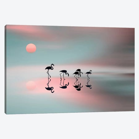 A Family Of Flamingos Canvas Print #OXM1874} by Natalia Baras Canvas Art