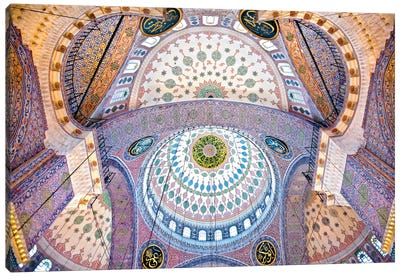 Main Columns And Domes, Sultan Ahmet Mosque (The Blue Mosque),Istanbul, Turkey Canvas Print #OXM1888