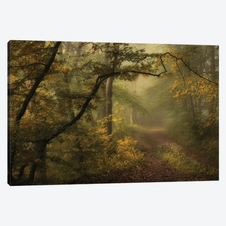 A Sorrow Beyond Dreams Canvas Print #OXM1889} by Norbert Maier Canvas Artwork