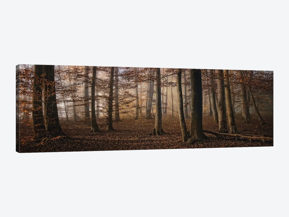 Autumn by Norbert Maier 1-piece Art Print