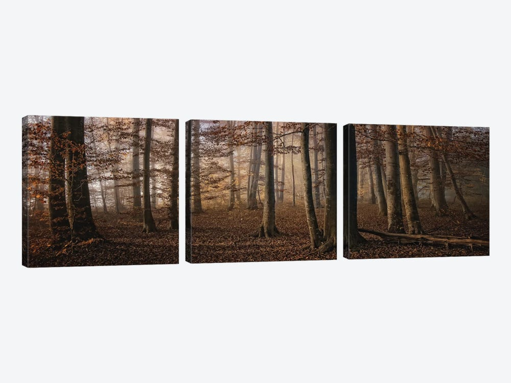 Autumn by Norbert Maier 3-piece Canvas Print