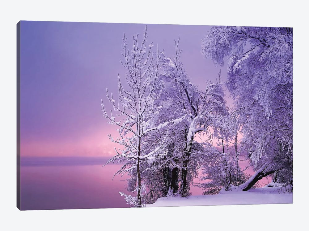 Stillness by Norbert Maier 1-piece Canvas Art Print