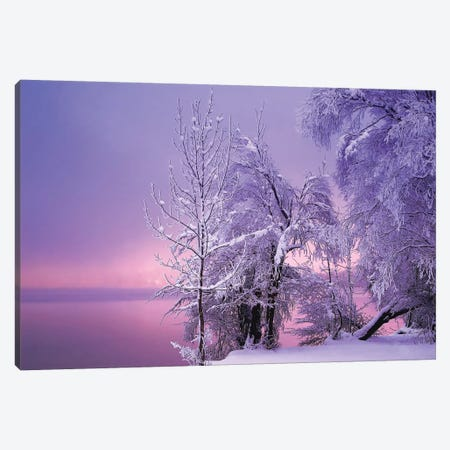 Stillness Canvas Print #OXM1894} by Norbert Maier Canvas Wall Art