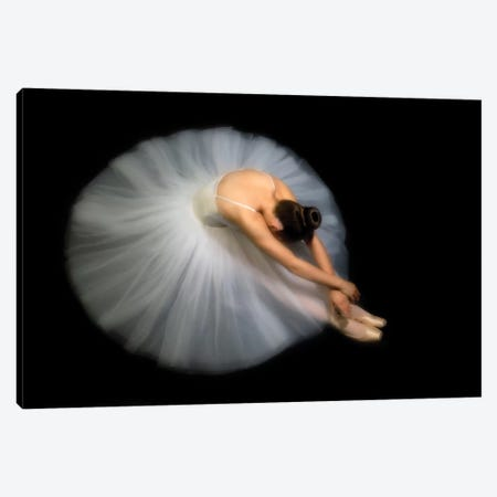 Elegance Canvas Print #OXM1924} by Pauline Pentony Canvas Wall Art