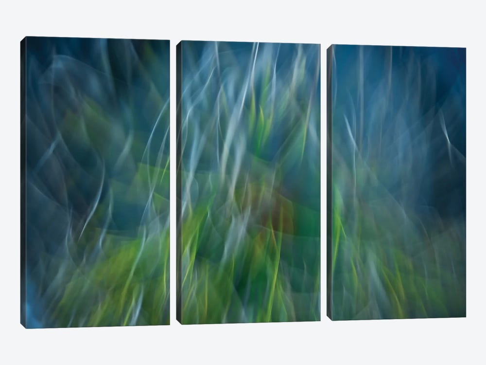Electro-Shock Blues by Paulo Abrantes 3-piece Canvas Art Print