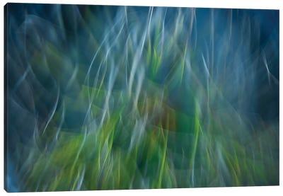 Electro-Shock Blues Canvas Art Print
