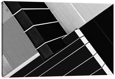 Fragile Symmetry Canvas Art Print