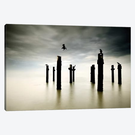 The Sentinels Canvas Print #OXM1937} by Paulo Dias Canvas Print