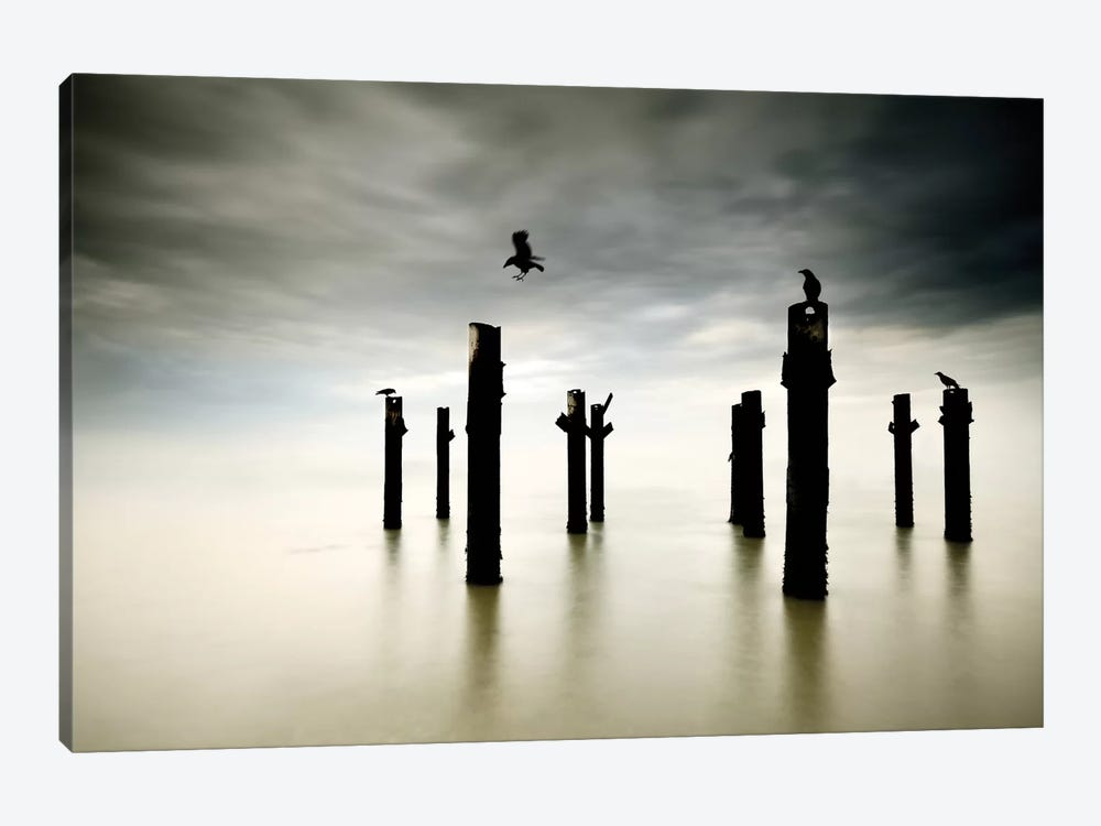 The Sentinels by Paulo Dias 1-piece Canvas Art Print
