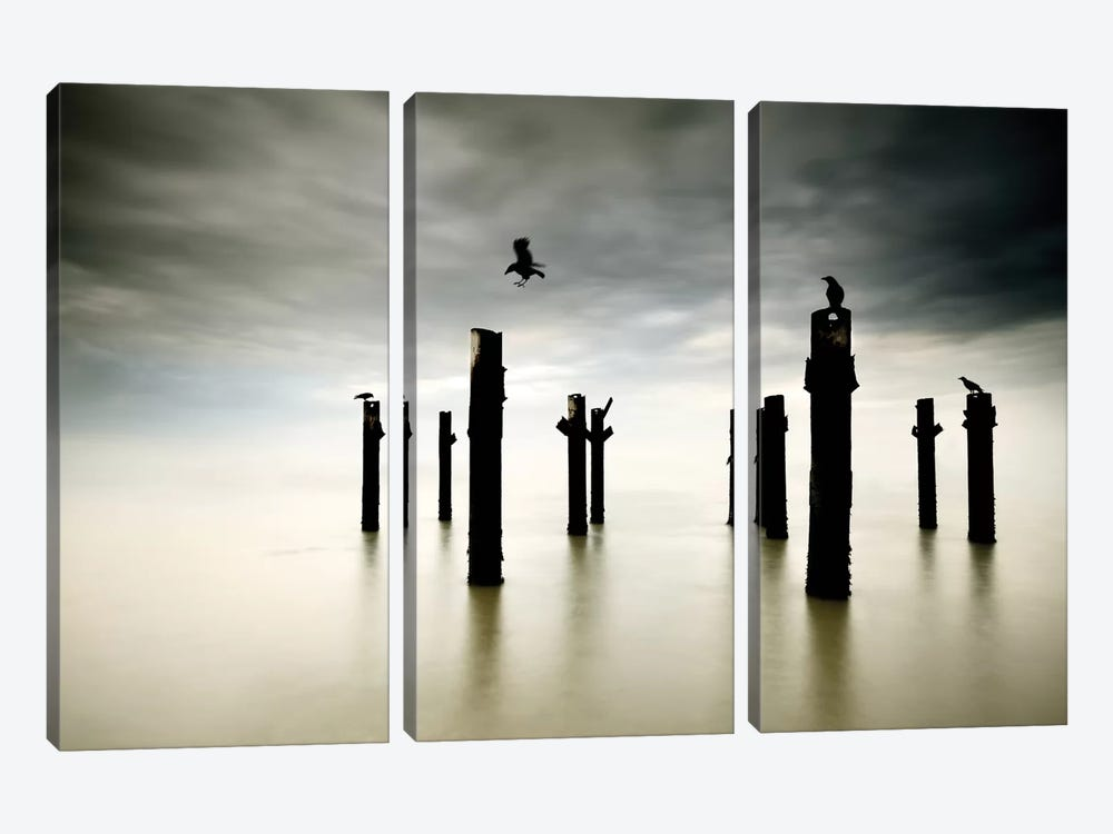 The Sentinels by Paulo Dias 3-piece Canvas Print