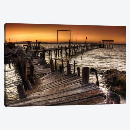 Carrasqueira Canvas Print #OXM1939} by Paulo Gomes Canvas Art