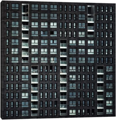 Living In The City Canvas Print #OXM1966