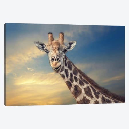 The Friendly Giant Canvas Print #OXM1970} by Piet Flour Canvas Artwork