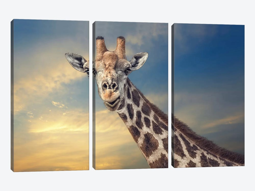 The Friendly Giant by Piet Flour 3-piece Canvas Artwork