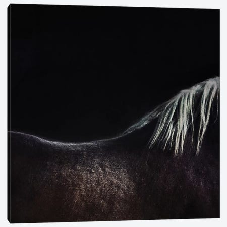 The Naked Horse Canvas Print #OXM1972} by Piet Flour Canvas Wall Art