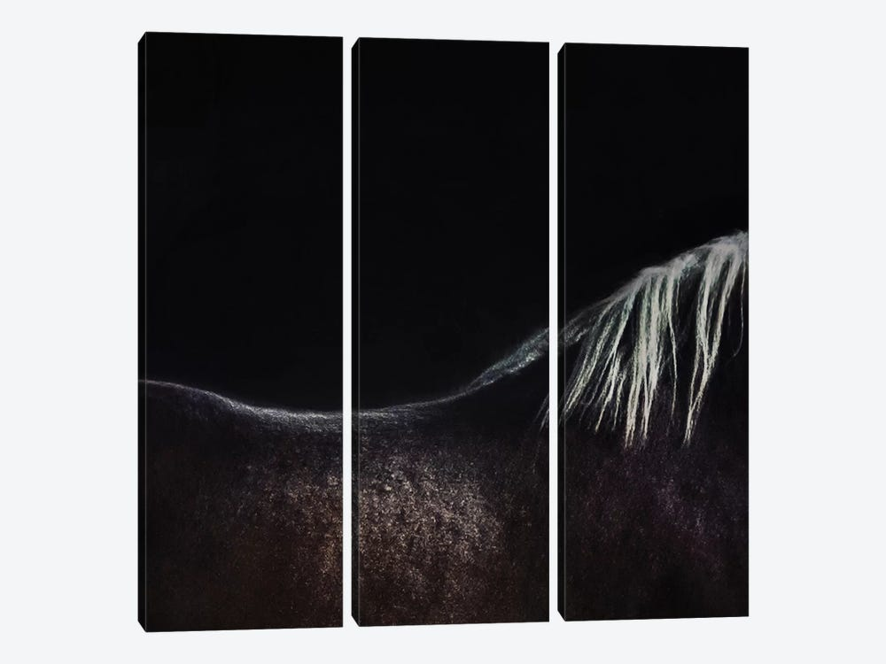The Naked Horse by Piet Flour 3-piece Canvas Art