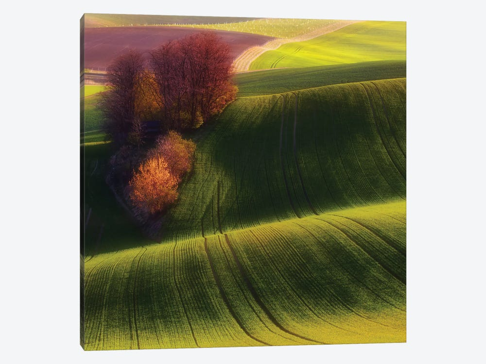 Green Fields 1-piece Canvas Print