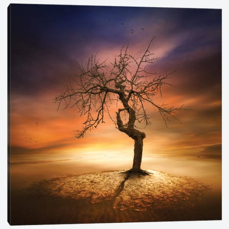 Lonely Canvas Print #OXM1977} by Piotr Krol Art Print