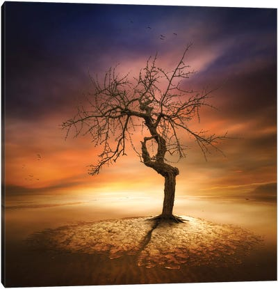 Lonely Canvas Art Print