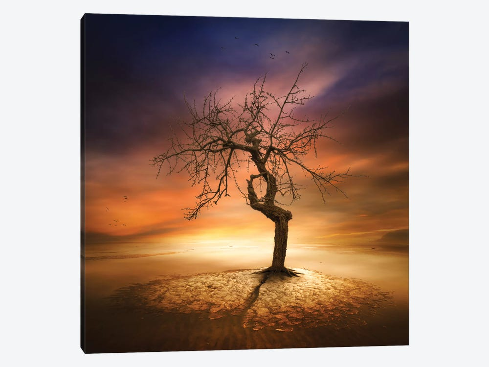 Lonely by Piotr Krol 1-piece Canvas Print
