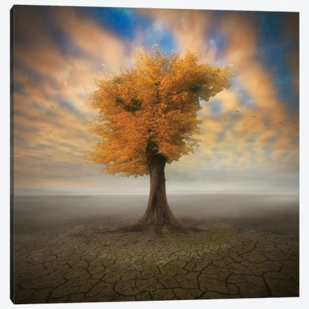 Lonesome Canvas Print #OXM1978} by Piotr Krol Canvas Art