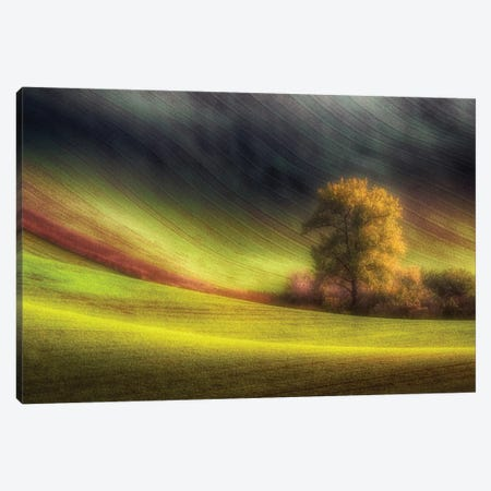 Moravian Fields Canvas Print #OXM1979} by Piotr Krol Canvas Wall Art