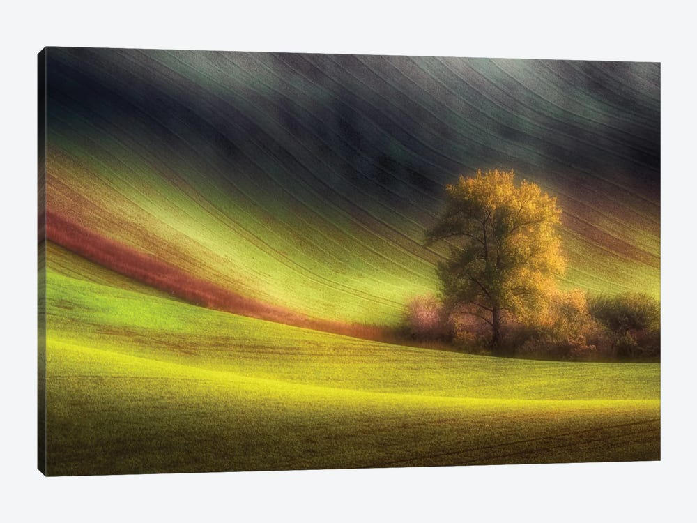 Moravian Fields 1-piece Art Print