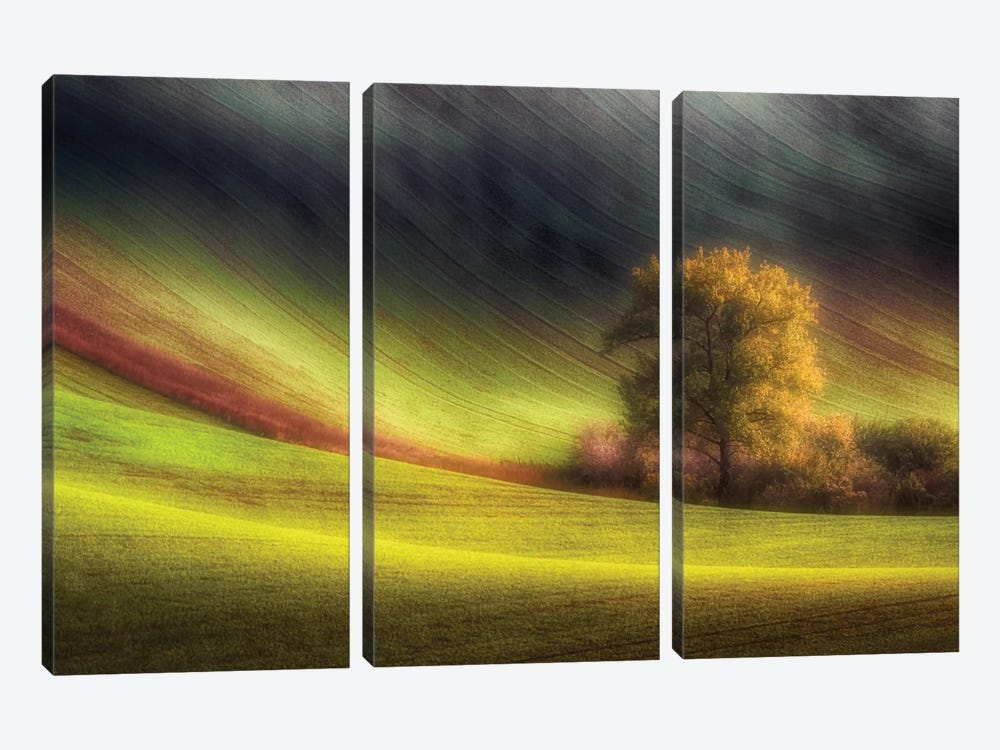 Moravian Fields by Piotr Krol 3-piece Art Print