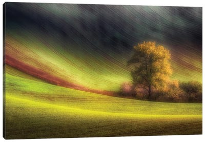 Moravian Fields Canvas Art Print