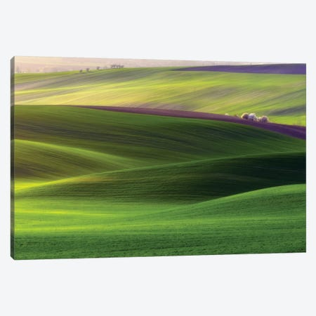 Verdant Land Canvas Print #OXM1980} by Piotr Krol Canvas Print