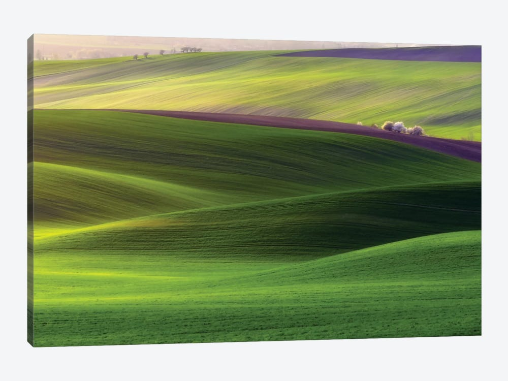 Verdant Land by Piotr Krol 1-piece Art Print