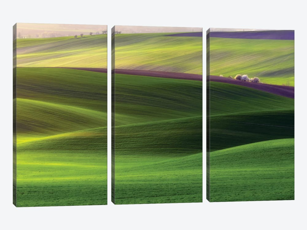 Verdant Land by Piotr Krol 3-piece Canvas Print