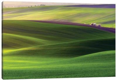 Verdant Land Canvas Art Print