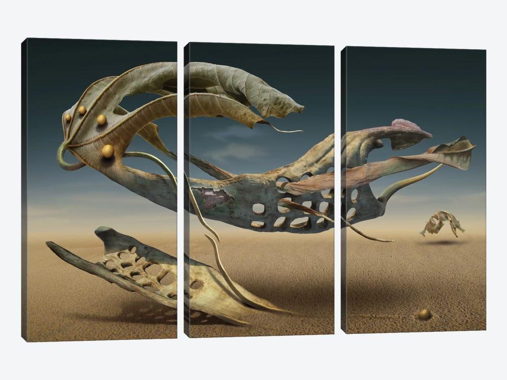 K_214 by Radoslav Penchev 3-piece Canvas Art