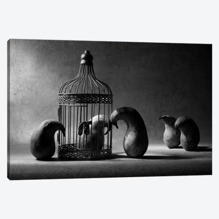 The Political Prisoner Canvas Print #OXM198} by Victoria Ivanova Canvas Art