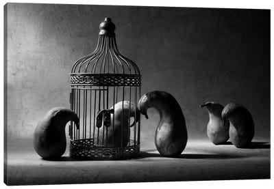 The Political Prisoner Canvas Art Print