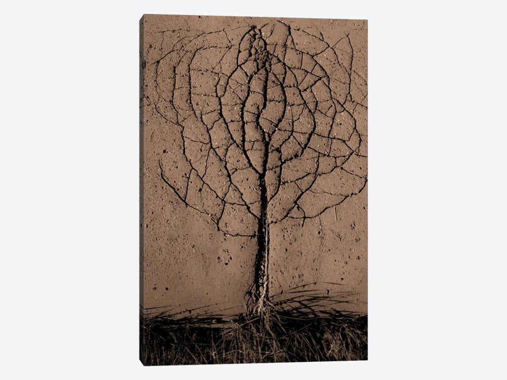 Asphalt Tree by Rasto Gallo 1-piece Canvas Artwork