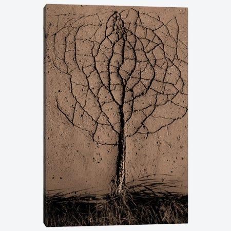Asphalt Tree Canvas Print #OXM1998} by Rasto Gallo Canvas Wall Art