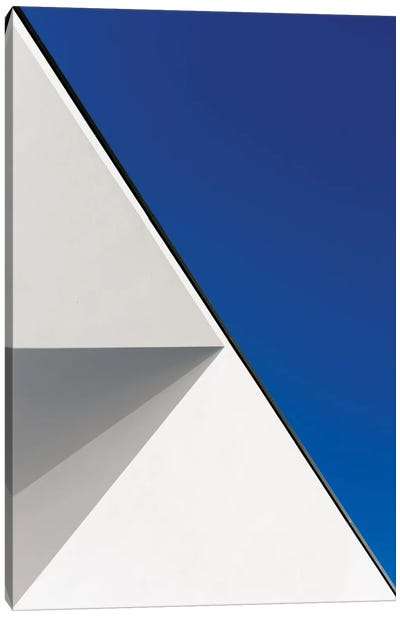 Structured Illusion Canvas Art Print