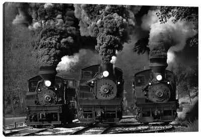 Train Race In B&W Canvas Art Print