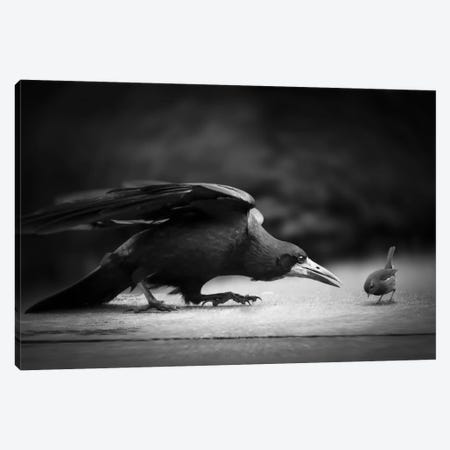 Evil Canvas Print #OXM2012} by Richard Bires Art Print