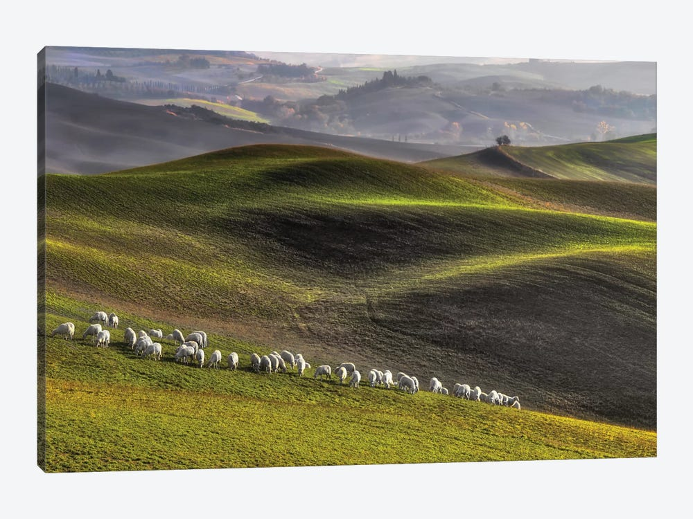 Pastoral 1-piece Canvas Wall Art