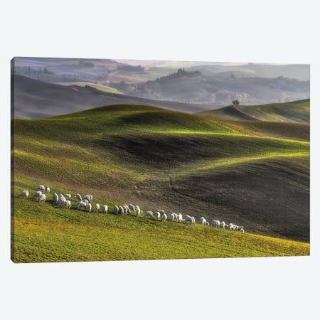 Pastoral Canvas Print #OXM2030} by Roman Lipinski Art Print