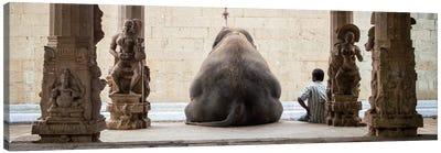The Elephant & It's Mahot Canvas Print #OXM2042