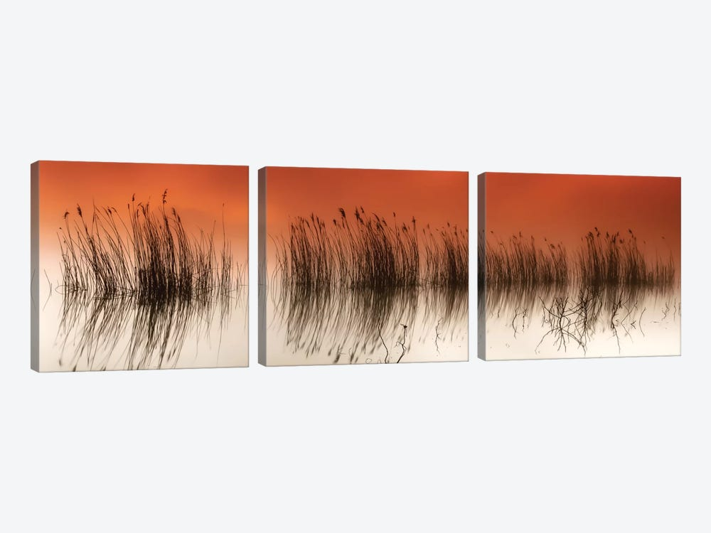 Serenity by Rui David 3-piece Canvas Art Print