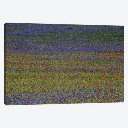 Get Lost Canvas Print #OXM2048} by Russo Francesco Canvas Artwork